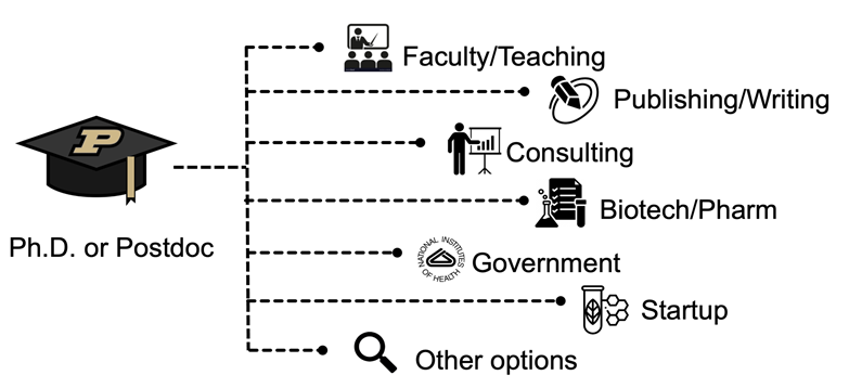 Graphic of career paths